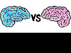 Neuroliderazgo femenino: La capacidad empática como clave del éxito